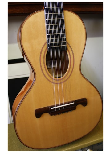2015 Giannini VSC4, Viola 10 String guitar