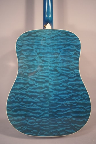 Taylor guitars used taylor gsle acoustic gutiar with case for Koi fish guitar