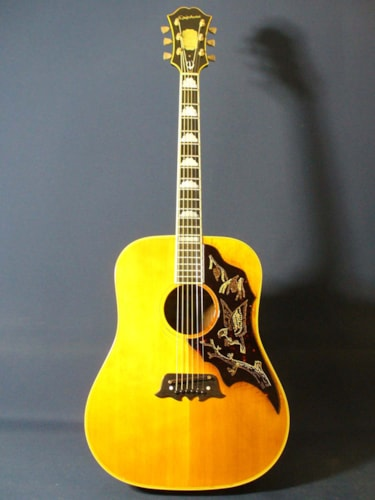 1967 Epiphone FT-120 Excellente (Reduce)