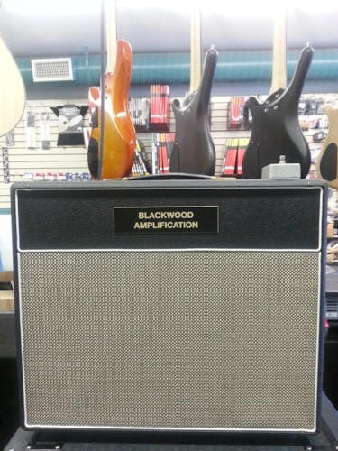 2015 Blackwood Amplification Hangar 18 Combo