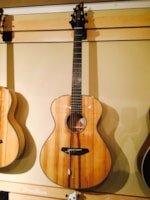 2015 Breedlove Oregon Concert limited edition