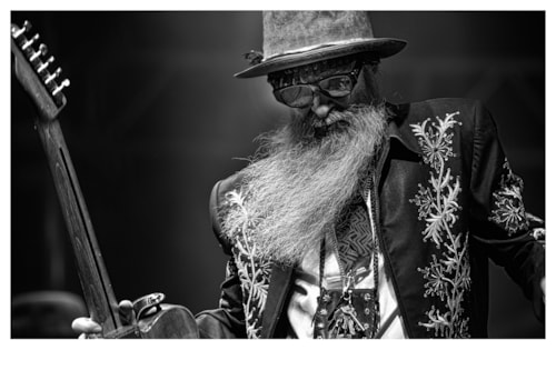 Billy Gibbons Limited Edition Print Billy Gibbons Limited Edition Print