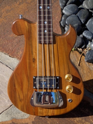 ~1965 R.C Allen Travel Bass