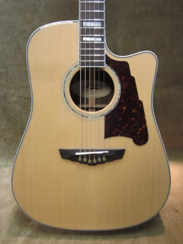 D'Angelico Bowery SD 500