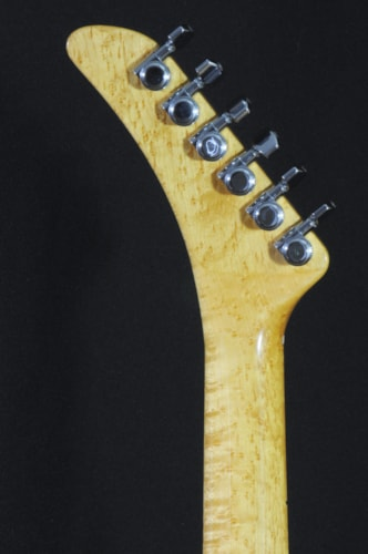 2008 Radicic SD62...just call it a Strat® ok?