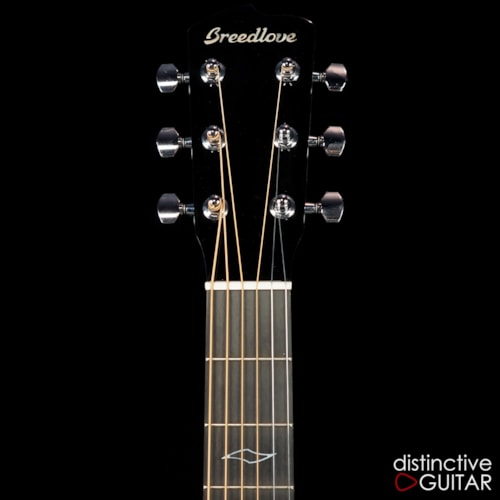 Breedlove DEMO Legacy Dreadnought