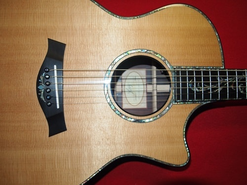 2010 Taylor ps-14ce