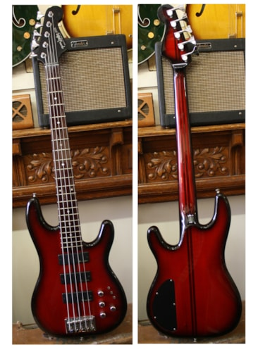 Dolan 5-String Electric Bass