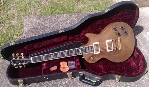 1999 Gibson Les Paul Elegant ALLOY 1 of 3