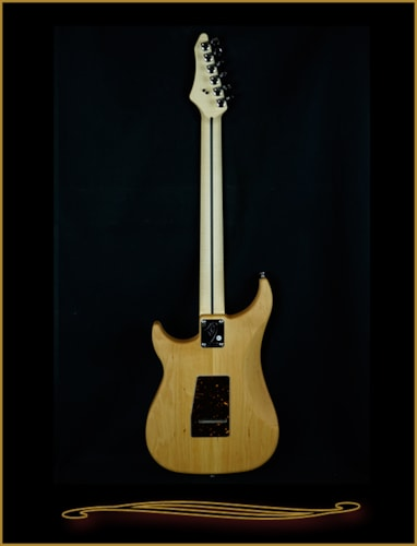 Vigier Excalibur Shawn Lane Signature Model