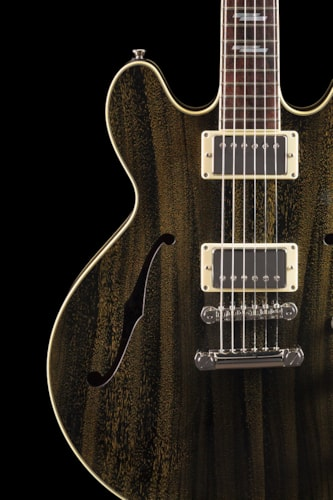 2014 Collings I-35 Deluxe Golden Dog Hair (799) I-35 Deluxe