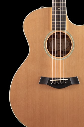 Taylor Willcutt Acoustic Suites Special Edition GAce Cocobolo (130) Willcutt Acoustic Suites Special Edition GAce
