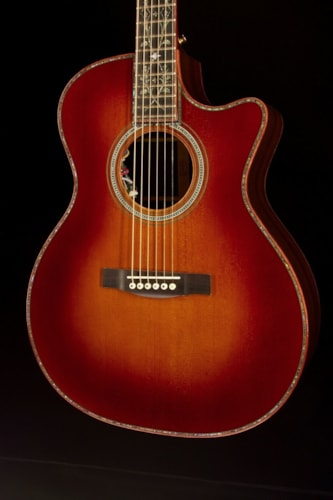 Martin Custom Shop GP Cutaway Rosewood Neck Harmonic Vine (268) Custom Shop GP Cutaway