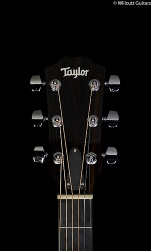 Taylor 214ce Deluxe (273) 214ce Deluxe