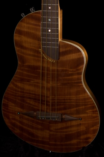 2016 Rick Turner RB4 Fretless