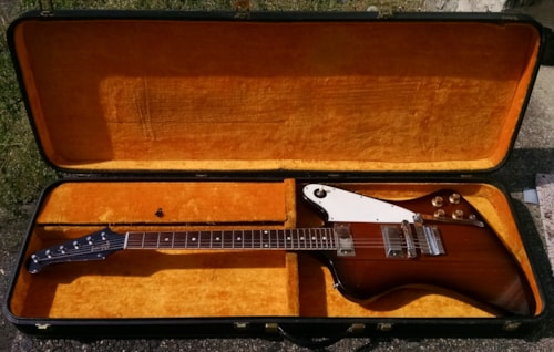 1964 Gibson Firebird case