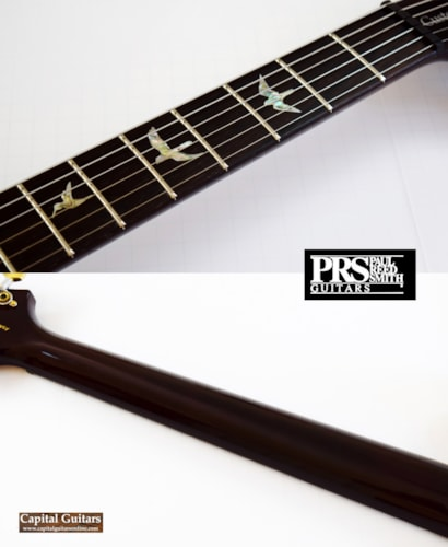 2014 PRS Wood Library Custom 22 Trem Brazilian