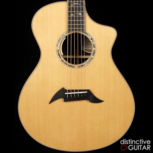 Breedlove Masterclass Concert DG Exclusive Limited
