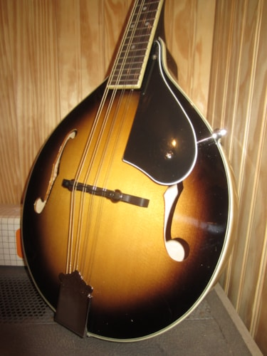 2017 Washburn M1S Acoustic Mandolin