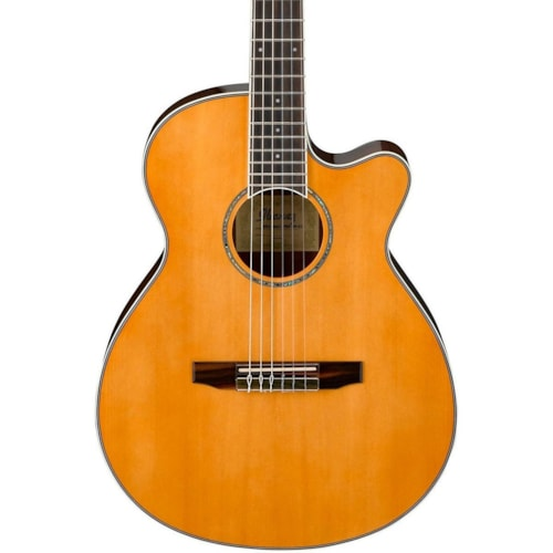 Ibanez AEG10NII Nylon String Cutaway Acoustic-Electric