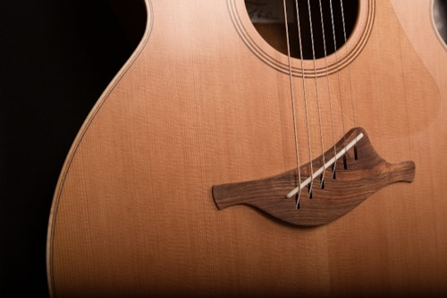 Lowden O22 Fan Fret