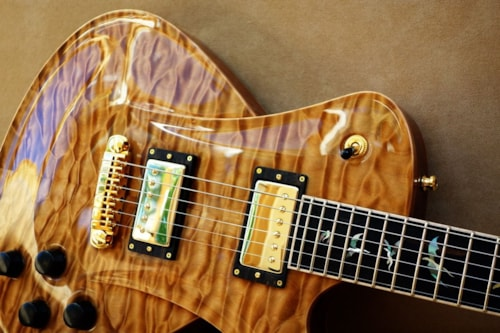 2016 Frank Hartung Embrace Hollowwood Deluxe