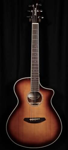 2016 Breedlove Pursuit Concert AB SB Limited