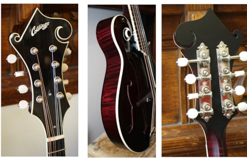 ~2014 Collings Collings MF-Dlx Deluxe