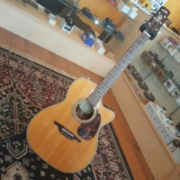 WECHTER GA-8221CE Acoustic Electric