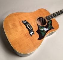 1975 Gibson Dove Acoustic
