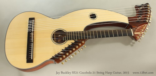 2015 Jay Buckley SE 21 Harp Guitar