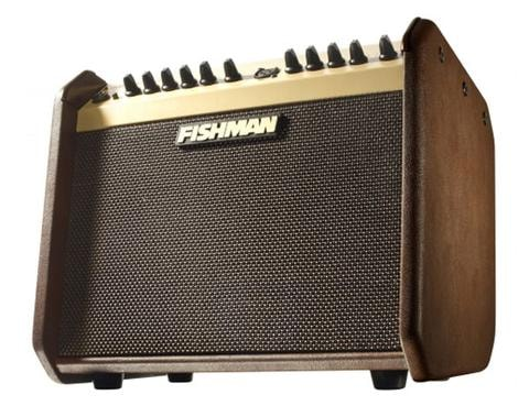 2013 Fishman Loudbox Mini