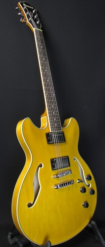 2016 Ibanez AS73