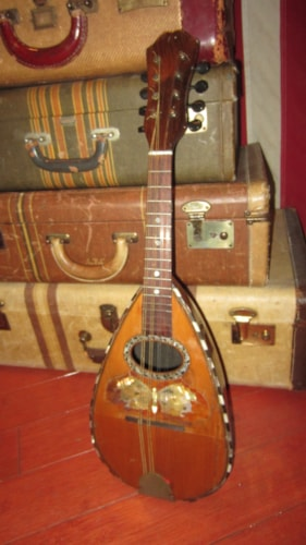 ~1902 unknown Bowl Back Mandolin