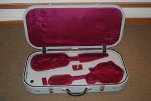 Mark Leaf Violin/Mandolin Case