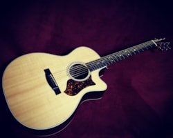 2015 Martin  Performance Artist GPCPA4 - Rosewood