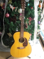 2009 Martin M-21 Steve Earle Signature