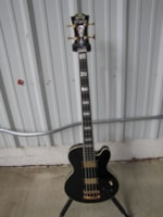 2014 D'Angelico Excel
