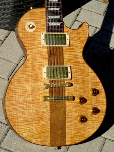 "2006 Gibson LES PAUL Spotlight Special ""Prototype"""