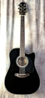 Takamine GD-30CE Electric/Acoustic