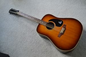 1973 Epiphone not known