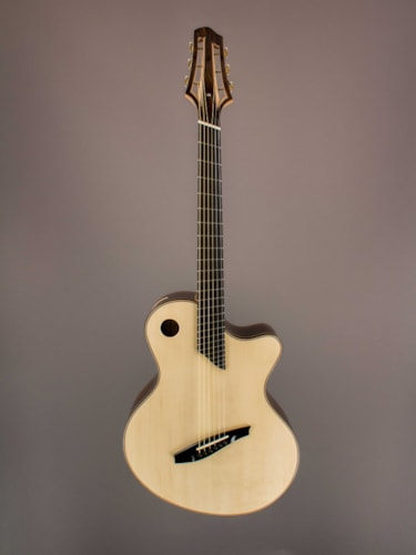 2017 Lavoie Guitars Fan Fret