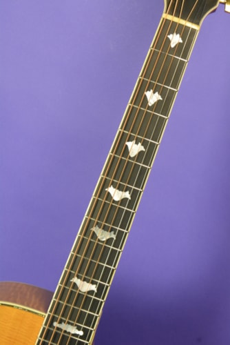 1990 Greven J Cutaway White Lady Custom