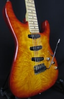 Warmoth Parts Caster Built by Mike Lull