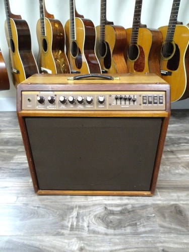 1980 ACOUSTIC 165 JBL M1 Series 1x12 Combo w/custom made 2x12 extension