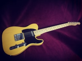 2013 Fender® Special Edition Deluxe Ash Telecaster®