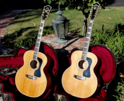 1995 Guild® F-65-12 and F-65  Matched Set