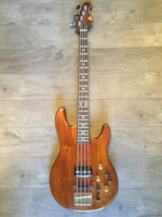 Roland  G-33 Synth Bass- Lenny Kravitz Collection with COA