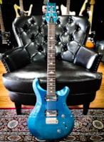 2017 PRS S2 Custom 22 Custom Color of the Month