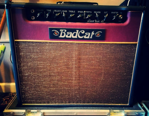 "~2006 Bad cat ""Trem Cat"" 1x12 Tube Amp"